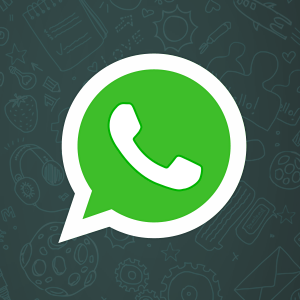 Icona di WhatsApp Beta