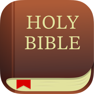 Free new niv download in bible app   youth ministry geek.