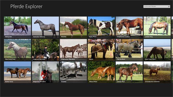 Horse Explorer Beziehen Microsoft Store De De