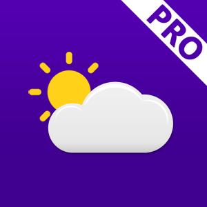 Weather Pro-GooTile