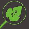 Növénykereső Pro