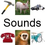 Animal, Instrument & Vehicle Sounds