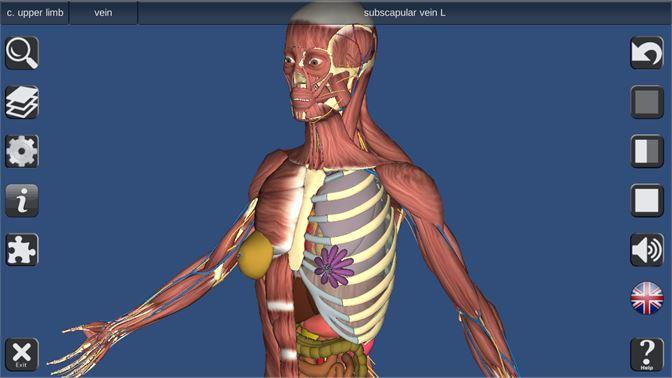 Buy 3D Human Anatomy - Microsoft Store