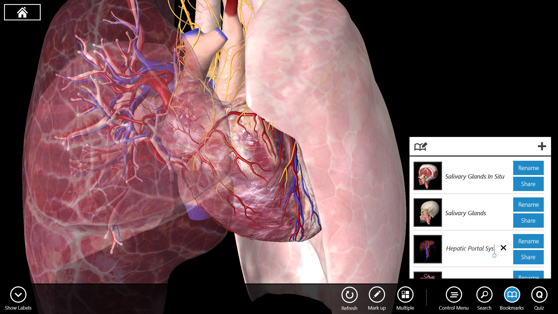 3d Anatomy App Gallery - human body anatomy