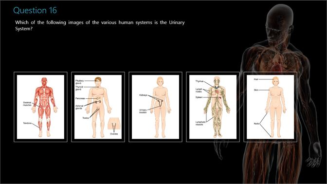 Get Human Anatomy and Physiology Quiz - Microsoft Store